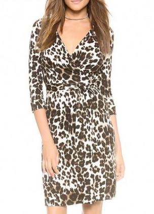 Ferity Leopard Print Dress